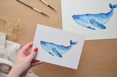 Láminas ilustradas animales marinos